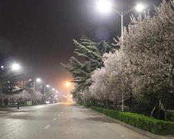 河南省灵宝市城区LED路灯改造